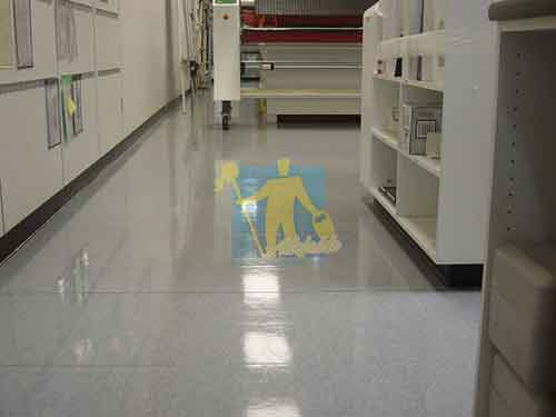 cleaning vinyl floor after Adelaide