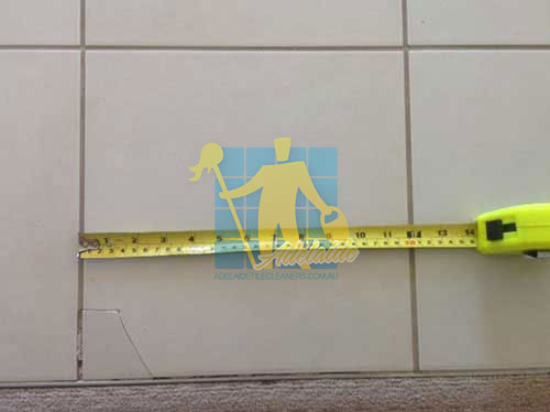 Campbelltown repairing damaged tiles