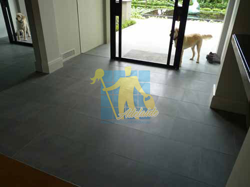 bluestone floor honed tiles living room grey_grout